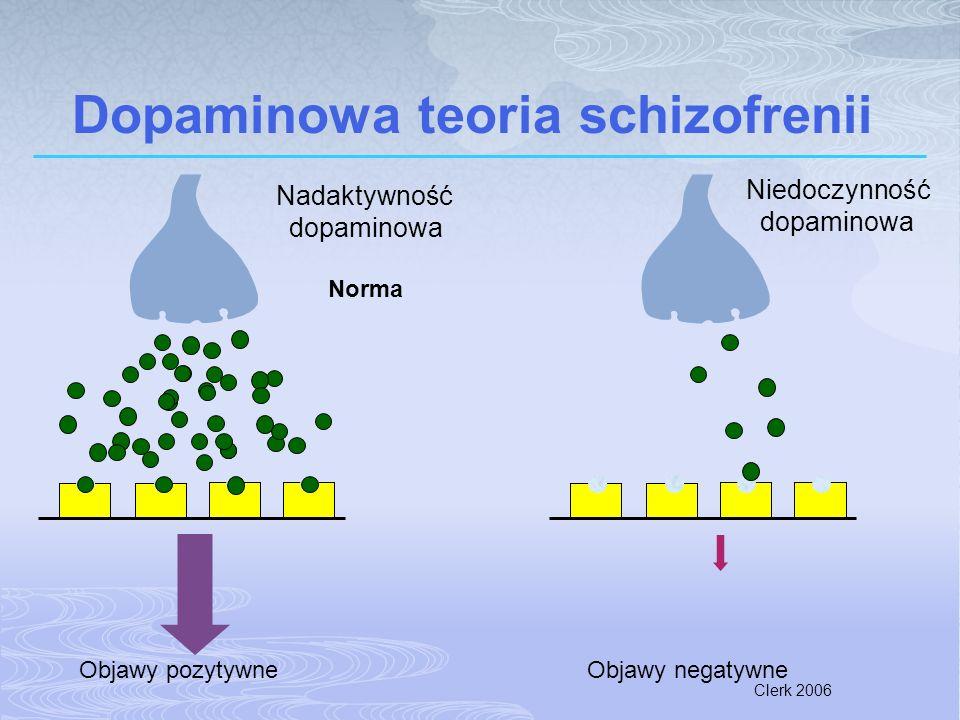 Clerk 2006 Dopaminowa teoria schizofrenii Objawy pozytywneObjawy negatywne Nadaktywność dopaminowa Niedoczynność dopaminowa Norma