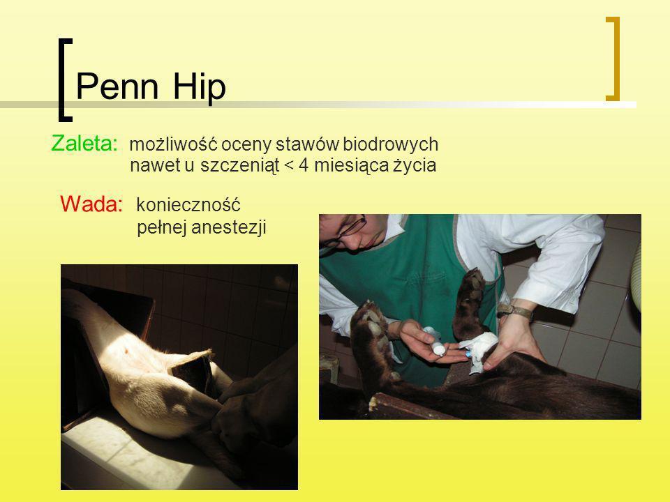 Penn Hip Zaleta: możliwość oceny stawów biodrowych nawet u szczeniąt < 4 miesiąca życia Wada: konieczność pełnej anestezji