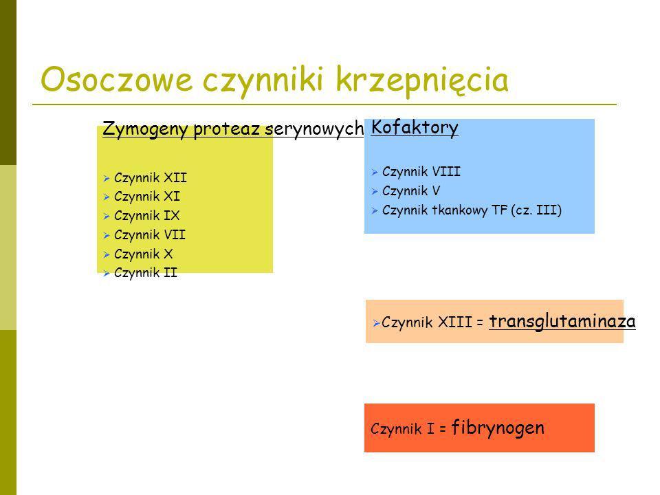 Osoczowe czynniki krzepnięcia Zymogeny proteaz serynowych Czynnik XII Czynnik XI Czynnik IX Czynnik VII Czynnik X Czynnik II Kofaktory Czynnik VIII Cz