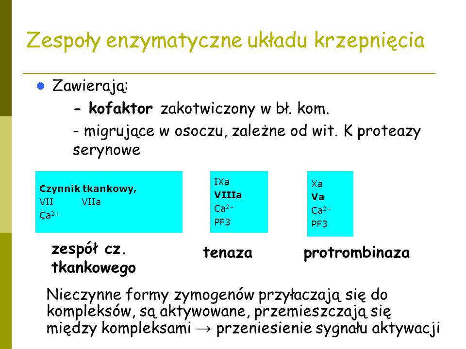 Zespoły enzymatyczne układu krzepnięcia Zawierają: – - kofaktor zakotwiczony w bł. kom. – - migrujące w osoczu, zależne od wit. K proteazy serynowe Cz