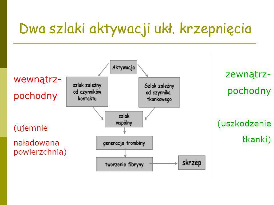 Dwa szlaki aktywacji ukł. krzepnięcia zewnątrz- pochodny (uszkodzenie tkanki) wewnątrz- pochodny (ujemnie naładowana powierzchnia)