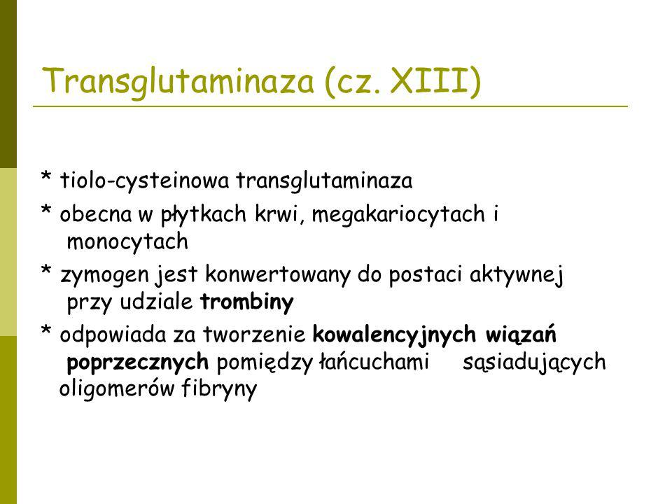 Transglutaminaza (cz. XIII) * tiolo-cysteinowa transglutaminaza * obecna w płytkach krwi, megakariocytach i monocytach * zymogen jest konwertowany do