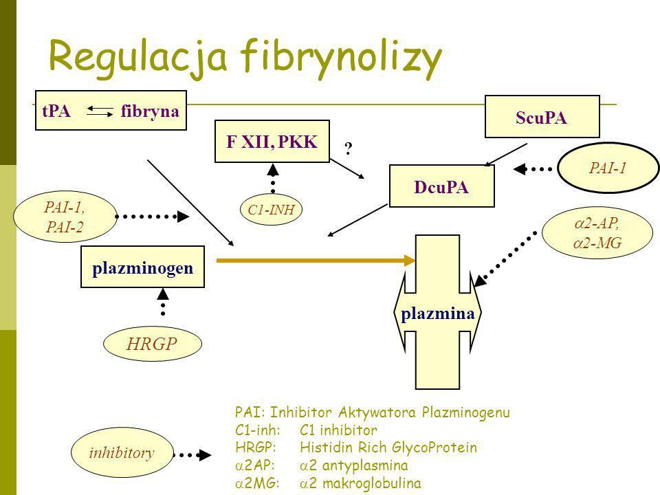 tPA fibryna F XII, PKK ScuPA DcuPA plazminogen 2-AP, 2-MG PAI-1, PAI-2 C1-INH Regulacja fibrynolizy ? PAI-1 plazmina HRGP inhibitory PAI: Inhibitor Ak