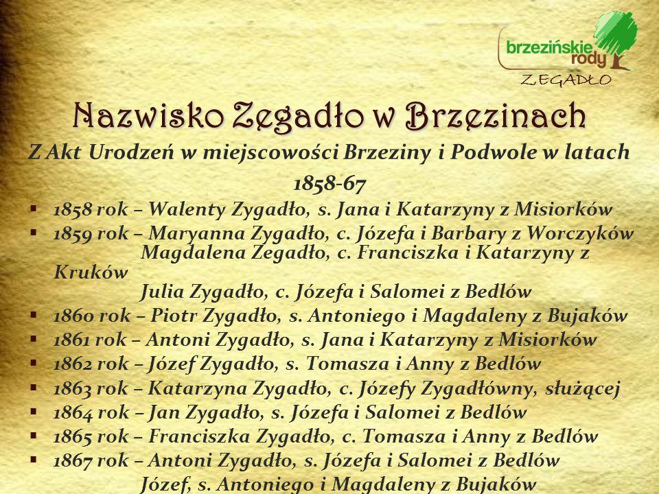 Z Akt Urodzeń w miejscowości Brzeziny i Podwole w latach 1858-67 1858 rok – Walenty Zygadło, s. Jana i Katarzyny z Misiorków 1859 rok – Maryanna Zygad