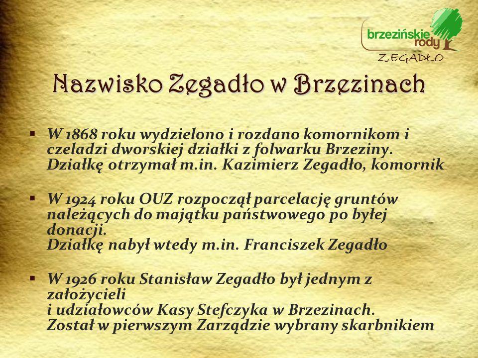 W 1868 roku wydzielono i rozdano komornikom i czeladzi dworskiej działki z folwarku Brzeziny. Działkę otrzymał m.in. Kazimierz Zegadło, komornik W 192