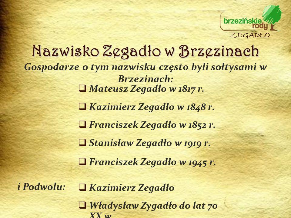 Gospodarze o tym nazwisku często byli sołtysami w Brzezinach: Mateusz Zegadło w 1817 r. Kazimierz Zegadło w 1848 r. Franciszek Zegadło w 1852 r. Stani