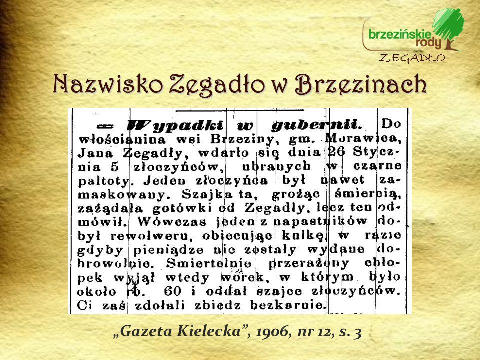 Nazwisko Zegadło w Brzezinach ZEGADŁO Gazeta Kielecka, 1906, nr 12, s. 3