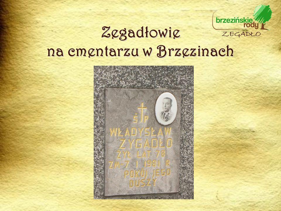 Zegadłowie na cmentarzu w Brzezinach ZEGADŁO