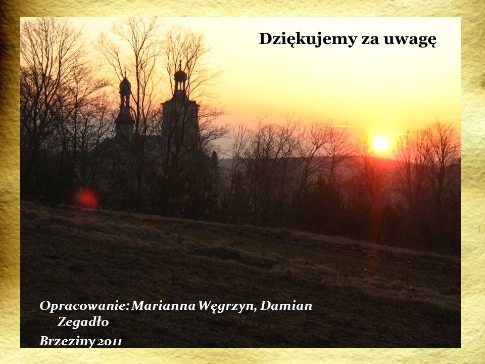 Dziękujemy za uwagę Opracowanie: Marianna Węgrzyn, Damian Zegadło Brzeziny 2011