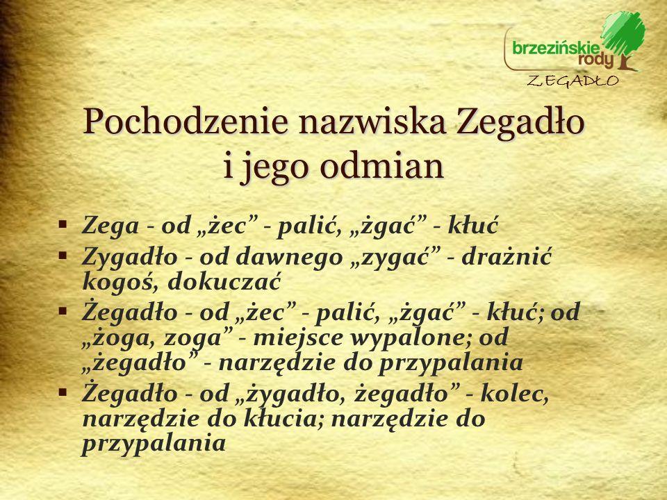 Pochodzenie nazwiska Zegadło i jego odmian Zega - od żec - palić, żgać - kłuć Zygadło - od dawnego zygać - drażnić kogoś, dokuczać Żegadło - od żec -