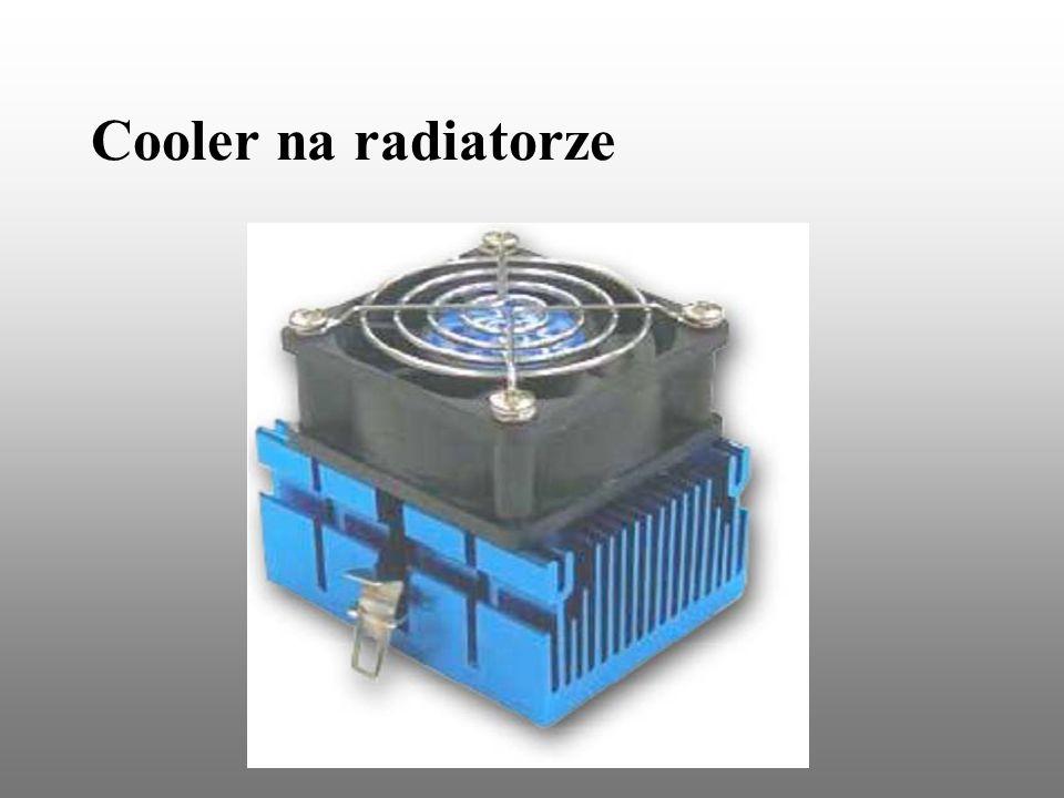 Cooler na radiatorze