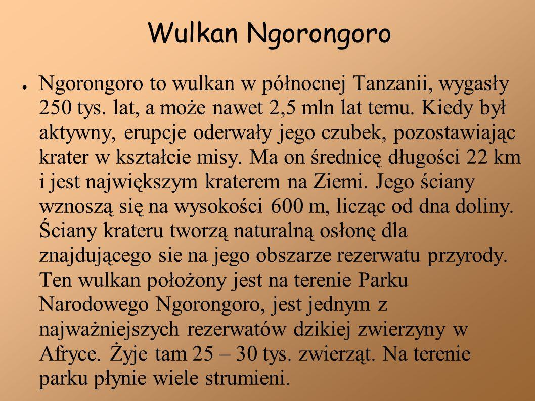 Wulkan Ngorongoro Ngorongoro to wulkan w północnej Tanzanii, wygasły 250 tys. lat, a może nawet 2,5 mln lat temu. Kiedy był aktywny, erupcje oderwały