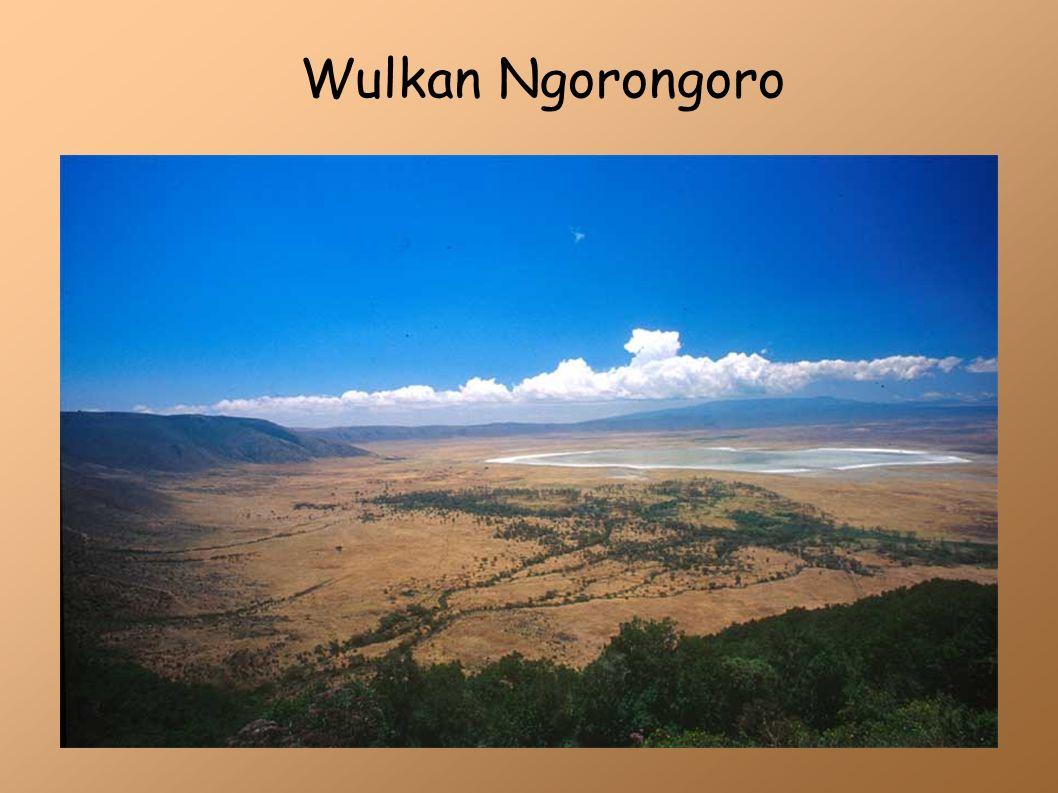 Krakatau Ponad milion lat temu w Indonezji na zachód od Jawy powstał stożkowaty wulkan.