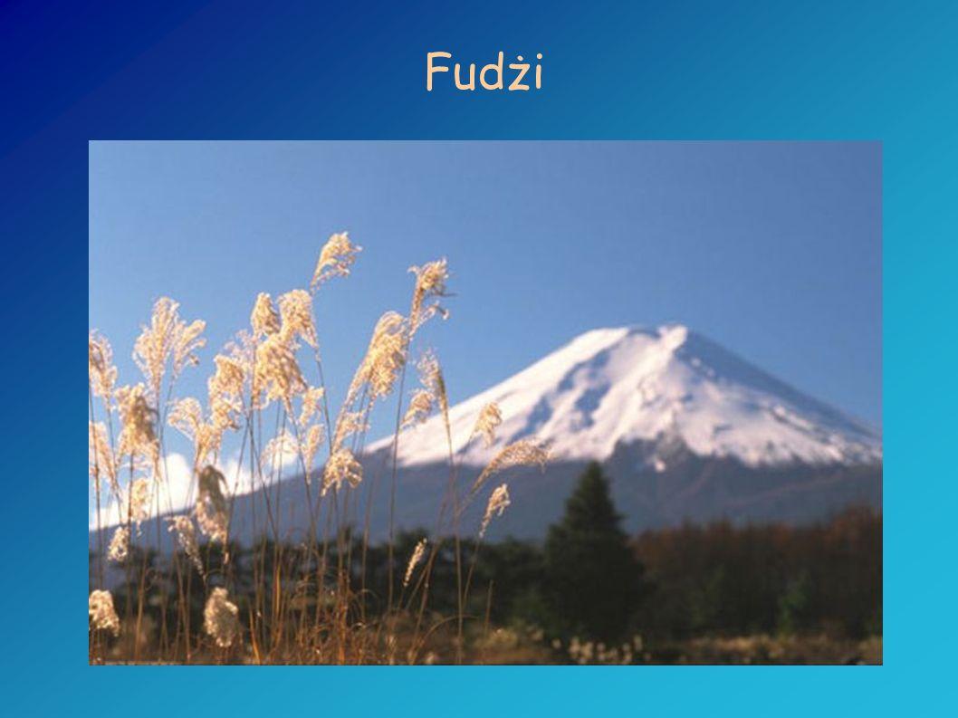 Wezuwiusz Wznosi się na wysokości 1277 m nad poziomem Zatoki Neapolitańskiej (Włochy) i jest jedynym aktywnym wulkanem w kontynentalnej Europie.