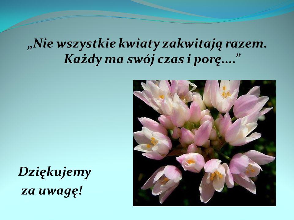 Nie wszystkie kwiaty zakwitają razem. Każdy ma swój czas i porę.... Dziękujemy za uwagę!