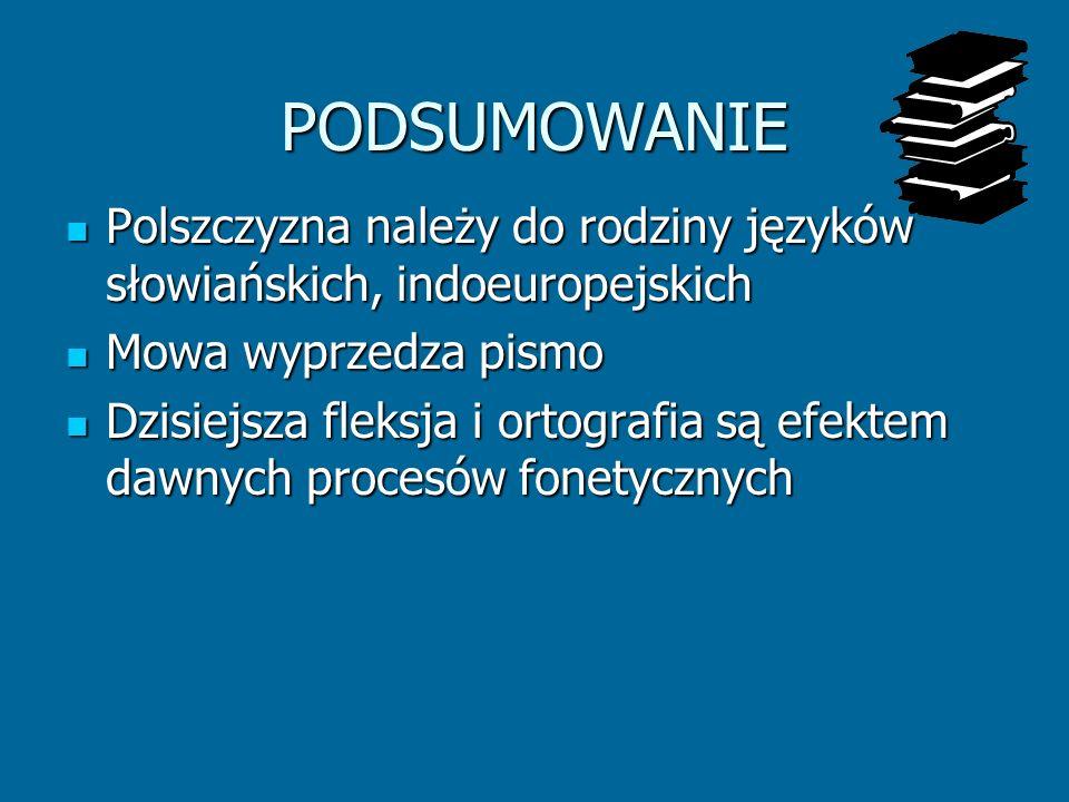 PODSUMOWANIE Polszczyzna należy do rodziny języków słowiańskich, indoeuropejskich Polszczyzna należy do rodziny języków słowiańskich, indoeuropejskich