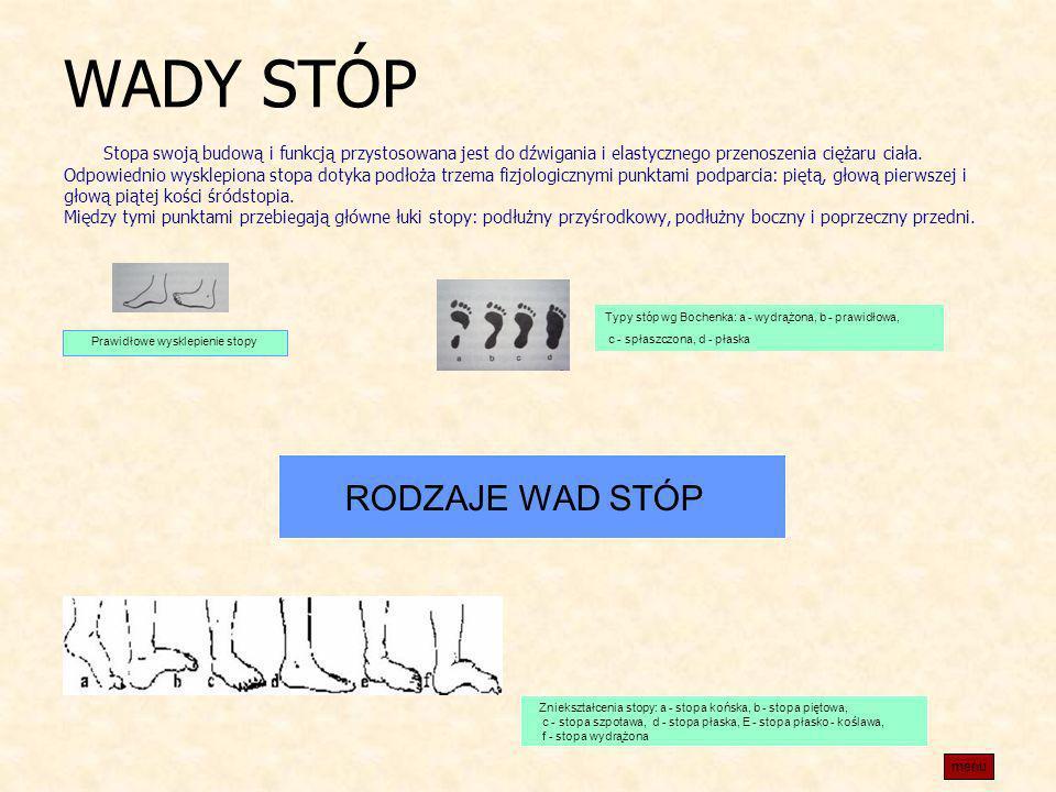 WADY STÓP Stopa swoją budową i funkcją przystosowana jest do dźwigania i elastycznego przenoszenia ciężaru ciała. Odpowiednio wysklepiona stopa dotyka