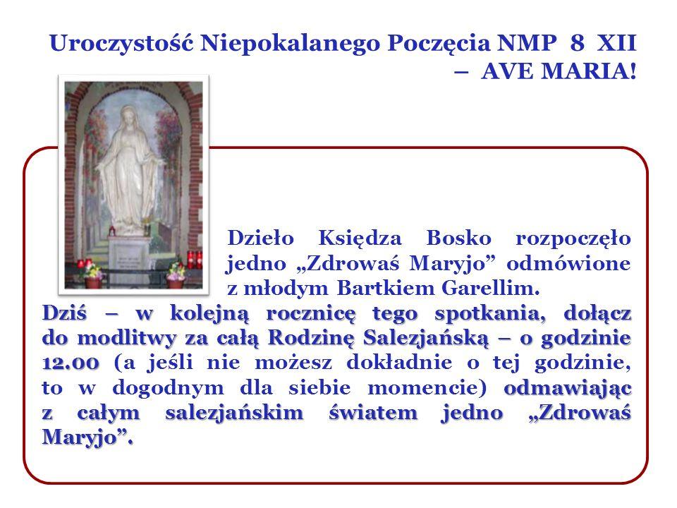 Uroczystość Niepokalanego Poczęcia NMP 8 XII – AVE MARIA! Dzieło Księdza Bosko rozpoczęło jedno Zdrowaś Maryjo odmówione z młodym Bartkiem Garellim. D