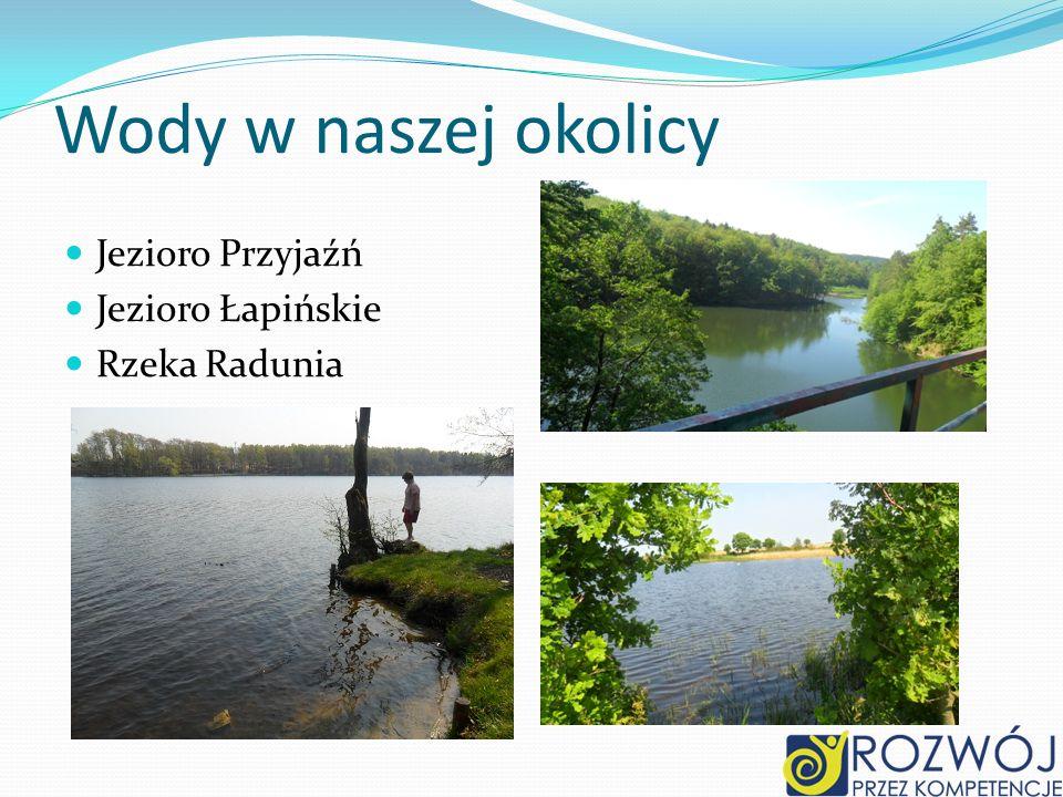 Wody w naszej okolicy Jezioro Przyjaźń Jezioro Łapińskie Rzeka Radunia