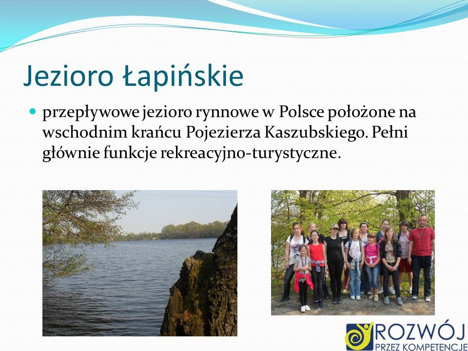 Jezioro Łapińskie przepływowe jezioro rynnowe w Polsce położone na wschodnim krańcu Pojezierza Kaszubskiego.