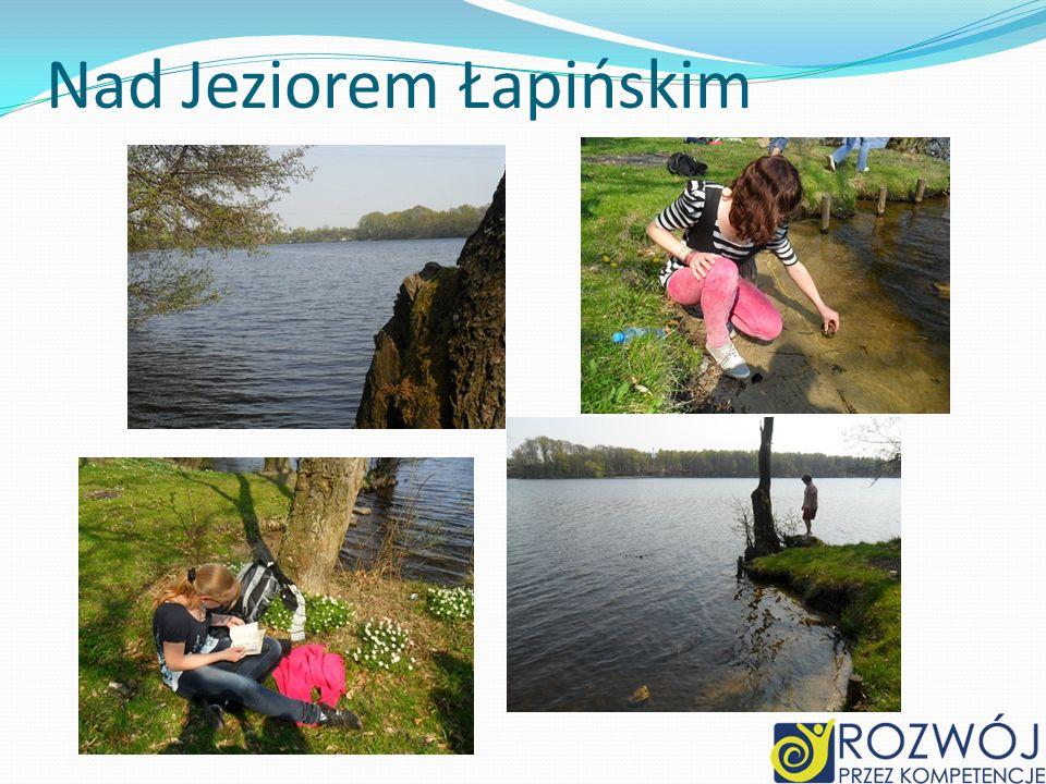 Nad Jeziorem Łapińskim