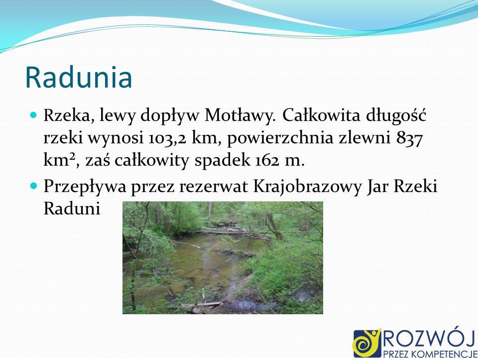 Radunia Rz eka, lewy dopływ Motławy.