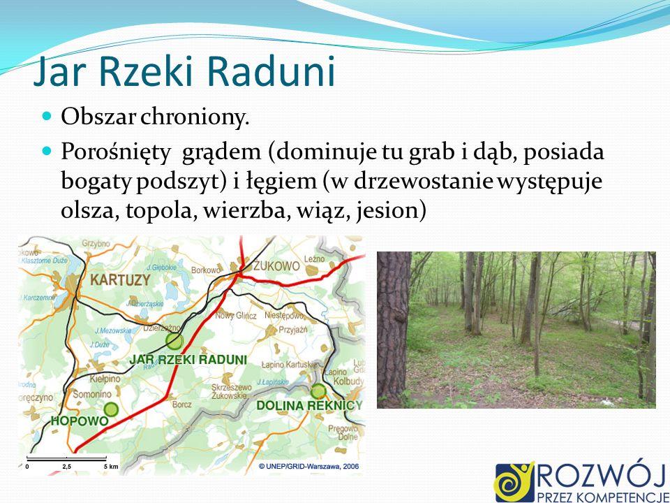Jar Rzeki Raduni Obszar chroniony.
