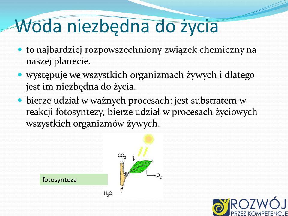 Wyniki badań WodasiarczanO2Odczyt % Z Raduni3,74,2105 Kropla Beskidu 3,0 - - Z J.