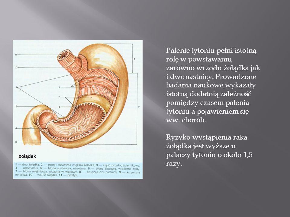 Palenie tytoniu pełni istotną rolę w powstawaniu zarówno wrzodu żołądka jak i dwunastnicy. Prowadzone badania naukowe wykazały istotną dodatnią zależn