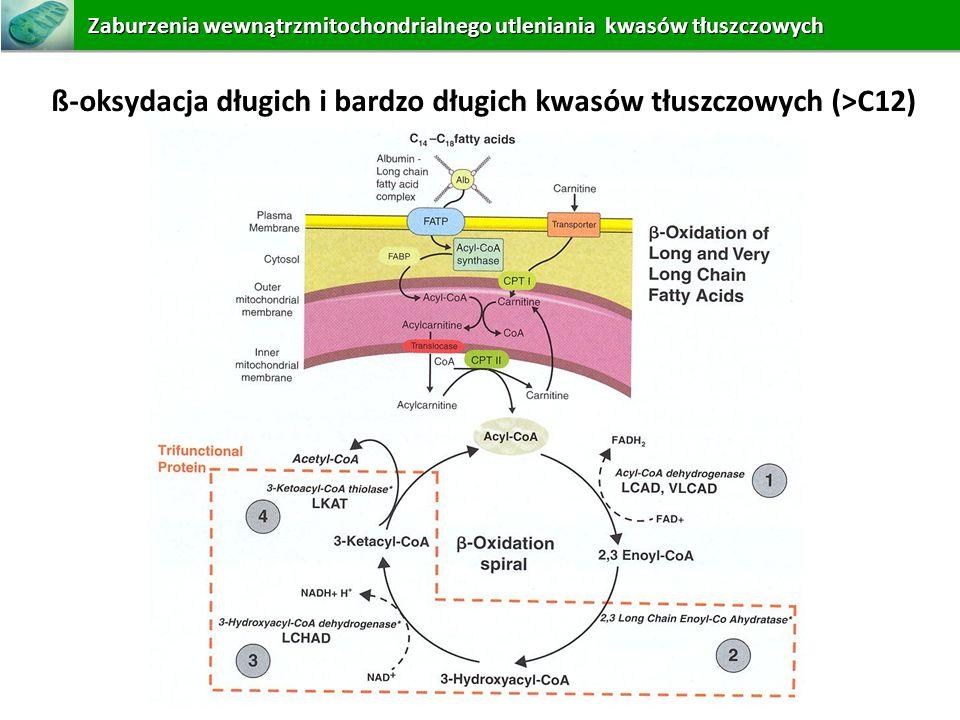 ß-oksydacja długich i bardzo długich kwasów tłuszczowych (>C12) Zaburzeniawewnątrzmitochondrialnego utleniania kwasów tłuszczowych Zaburzenia wewnątrz