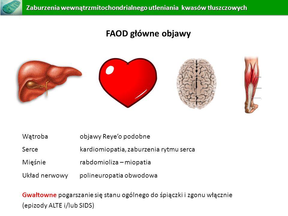 Wątroba objawy Reyeo podobne Serce kardiomiopatia, zaburzenia rytmu serca Mięśnie rabdomioliza – miopatia Układ nerwowy polineuropatia obwodowa Gwałto