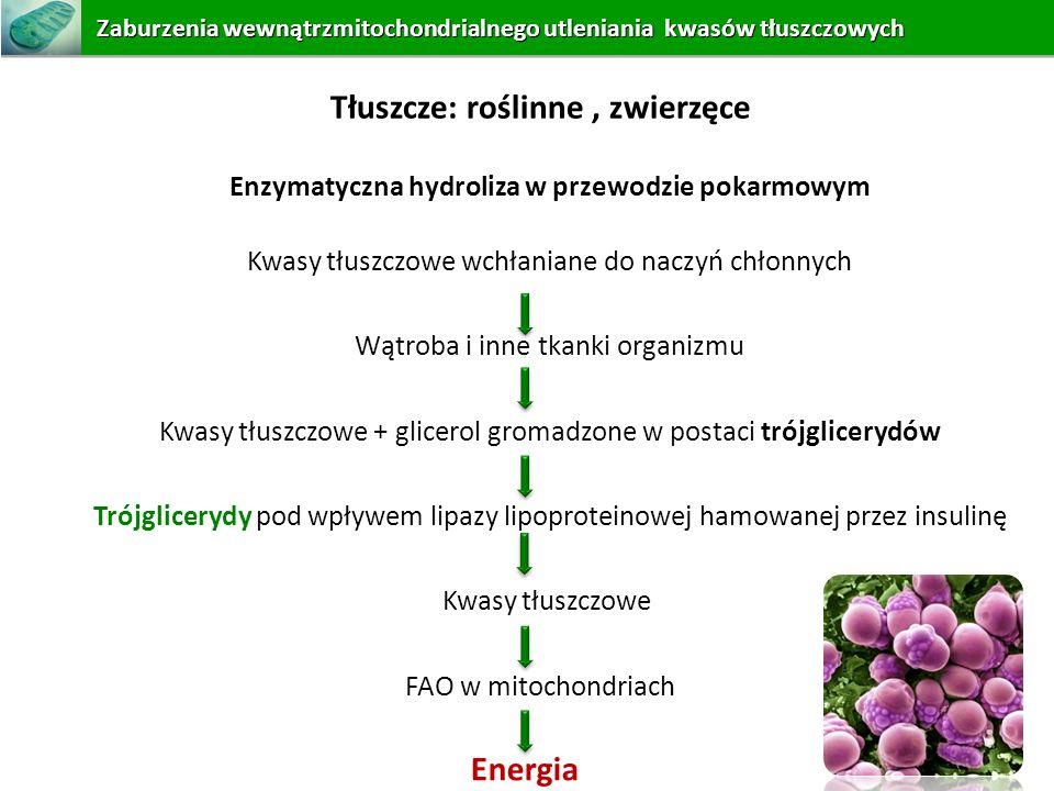 Zaburzeniawewnątrzmitochondrialnego utleniania kwasów tłuszczowych Zaburzenia wewnątrzmitochondrialnego utleniania kwasów tłuszczowych Tłuszcze: rośli