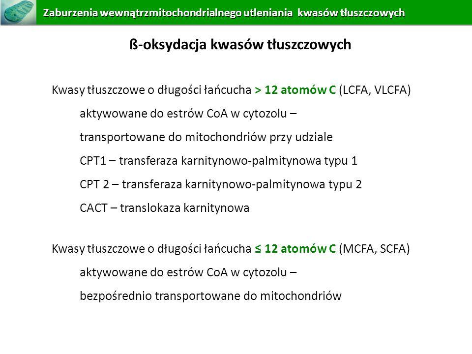 ß-oksydacja kwasów tłuszczowych Kwasy tłuszczowe o długości łańcucha 12 atomów C (MCFA, SCFA) aktywowane do estrów CoA w cytozolu – bezpośrednio trans