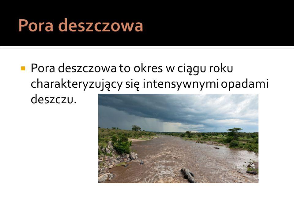 Pora deszczowa to okres w ciągu roku charakteryzujący się intensywnymi opadami deszczu.