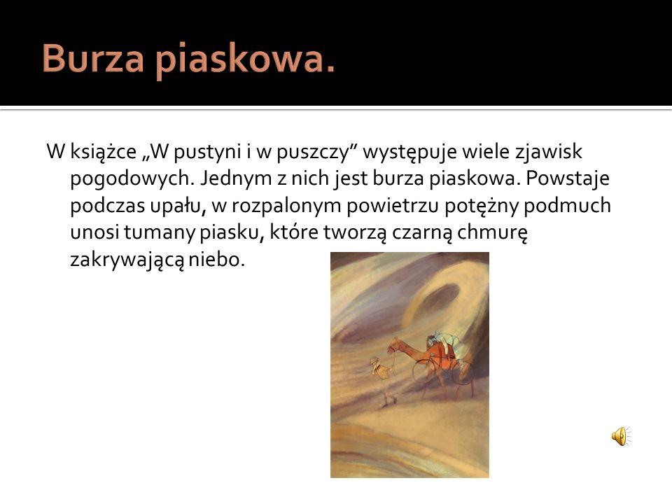 http://bi.gazeta.pl/im/3/10646/z10646803Q,burza-piaskowa--pustynia.jpg http://dcs-188-64-86-14.atmcdn.pl/scale/o2/tvn/web- content/m/p5/i/7bccfde7714a1ebadf06c5f4cea752c1/1d49ea66-faab-11e1-8055- 0025b511226e.jpg?type=1&quality=100&srcmode=4&srcx=0/1&srcy=0/1&srcw=636&srch=2636&dstw =636&dsth=2636 http://i1.ryjbuk.pl/b8c9fe101f0c59e9d446b1769fa001770b54f296/wichura-gif-gif http://www2.kazimierznowak.pl/afryka-kazika/ http://klimat.energia.biz.pl/inf/burza-piaskowa.html http://mojefotografie.blox.pl/resource/Singing_dunes.jpg http://pl.wikipedia.org/wiki/Burza_piaskowa http://zapytaj.onet.pl/Category/011,004/2,1618392,Co_to_jest_biala_godzina_w_egipcie.html http://zapytaj.onet.pl/Category/001,003/2,159736,co_to_jest_fatamorgana.html