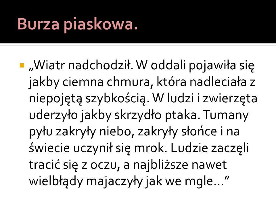http://www.focus.pl/newsy/zobacz/publikacje/dlaczego-wydmy-spiewaja/ http://pl.wikipedia.org/wiki/Pora_deszczowa http://zapytaj.onet.pl/Category/015,004/2,2493496,Co_to_jest_burza_podz wrotnikowa.html