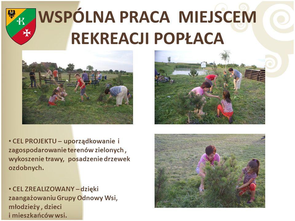 WSPÓLNA PRACA MIEJSCEM REKREACJI POPŁACA CEL PROJEKTU – uporządkowanie i zagospodarowanie terenów zielonych, wykoszenie trawy, posadzenie drzewek ozdo