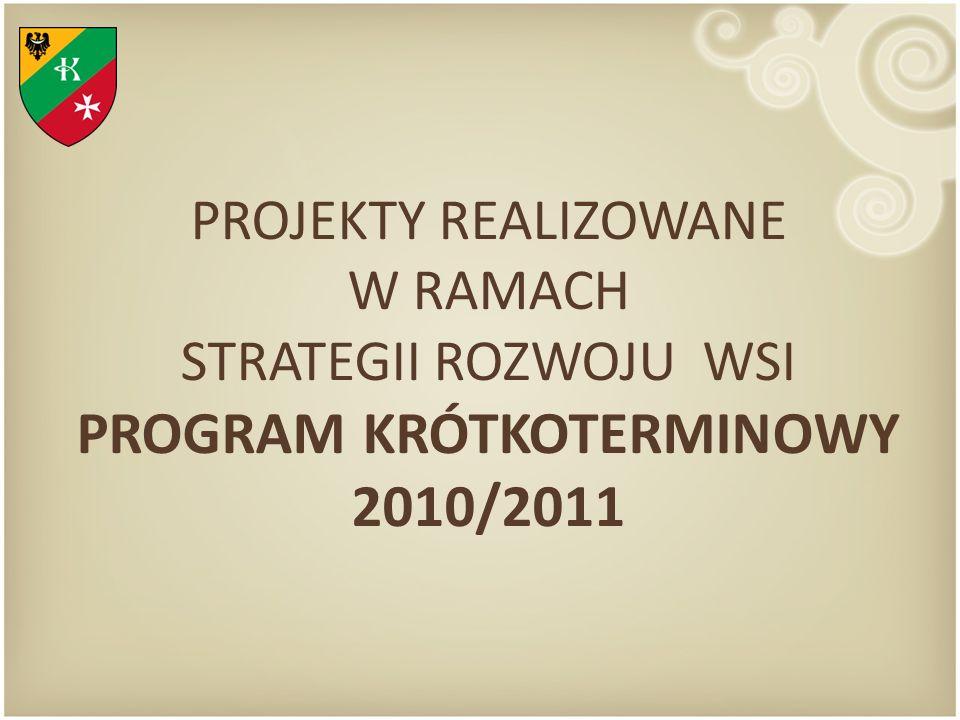 PROJEKTY REALIZOWANE W RAMACH STRATEGII ROZWOJU WSI PROGRAM KRÓTKOTERMINOWY 2010/2011