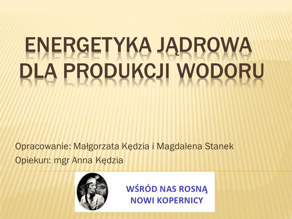Opracowanie: Małgorzata Kędzia i Magdalena Stanek Opiekun: mgr Anna Kędzia