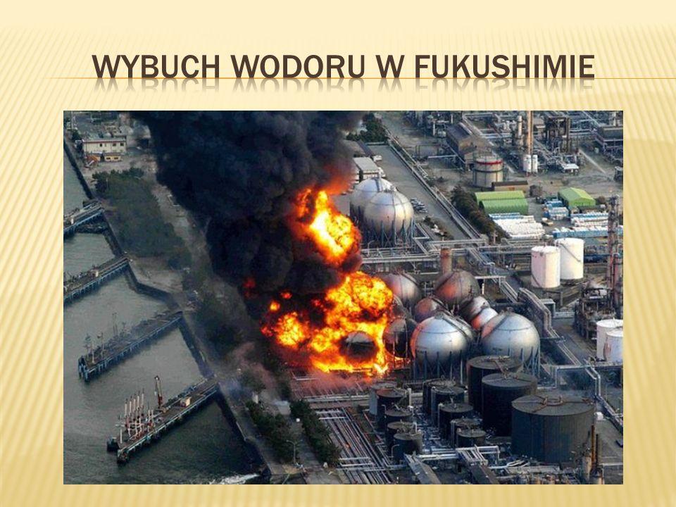 Trzęsienie ziemi i wywołana nim fala tsunami, jakie miało miejsce w Japonii, było zupełnie wyjątkowe.
