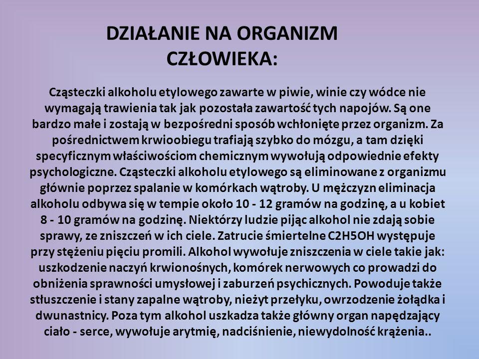 Cząsteczki alkoholu etylowego zawarte w piwie, winie czy wódce nie wymagają trawienia tak jak pozostała zawartość tych napojów. Są one bardzo małe i z