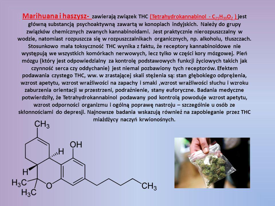 Marihuana i haszysz- zawierają związek THC (Tetrahydrokannabinol - C 21 H 30 O 2 ) jest główną substancją psychoaktywną zawartą w konopiach indyjskich