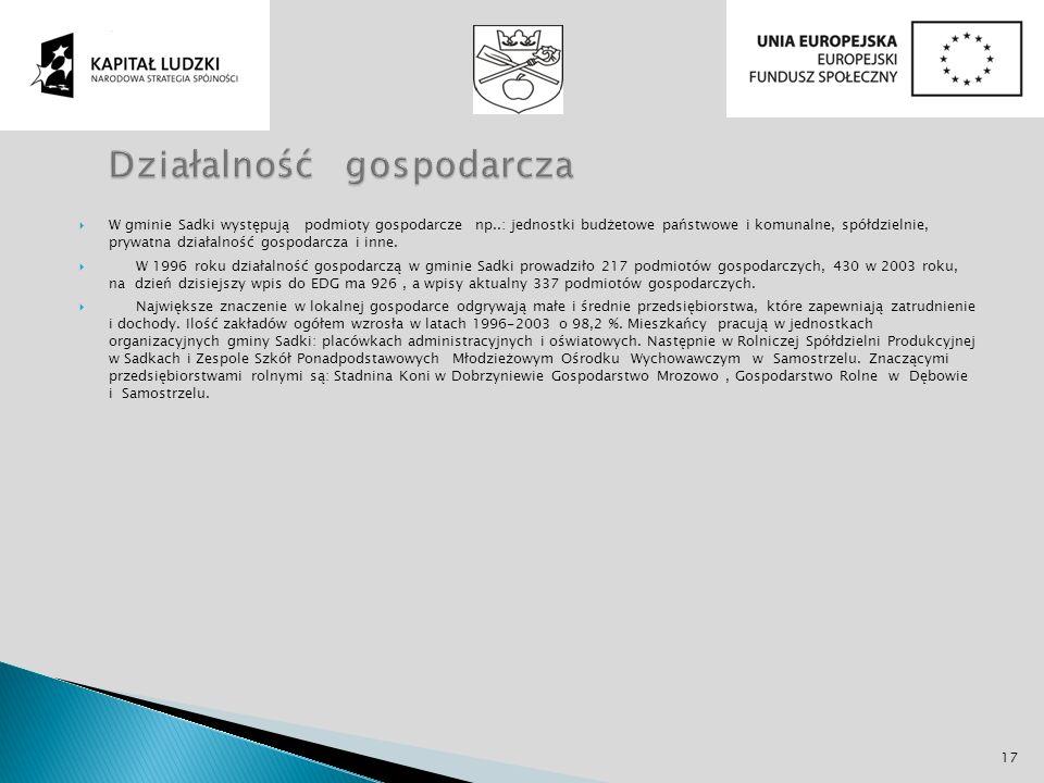 W gminie Sadki występują podmioty gospodarcze np..: jednostki budżetowe państwowe i komunalne, spółdzielnie, prywatna działalność gospodarcza i inne.