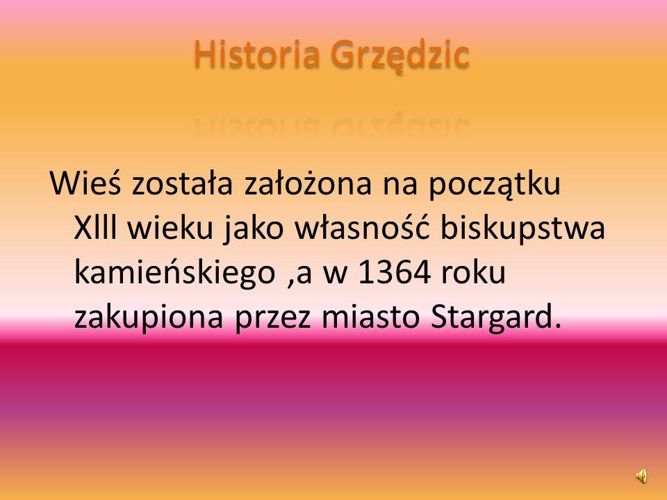 Co to są Grzędzice ? Grzędzice,to wieś położona w Polsce w województwie zachodniopomo rskim,powiecie stargardzkim i gminie Stargard Szczeciński.
