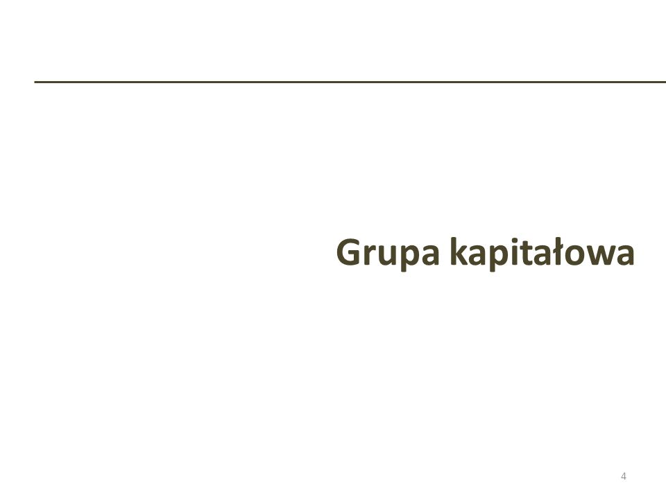 Grupa kapitałowa 4