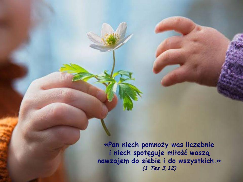 Nie chodzi tu o jakąś ukrytą naganę, jak gdyby w ich wspólnocie nie istniała miłość wzajemna; jest to raczej odwołanie się do prawa wpisanego w naturę miłości: prawa nieustannego wzrostu.