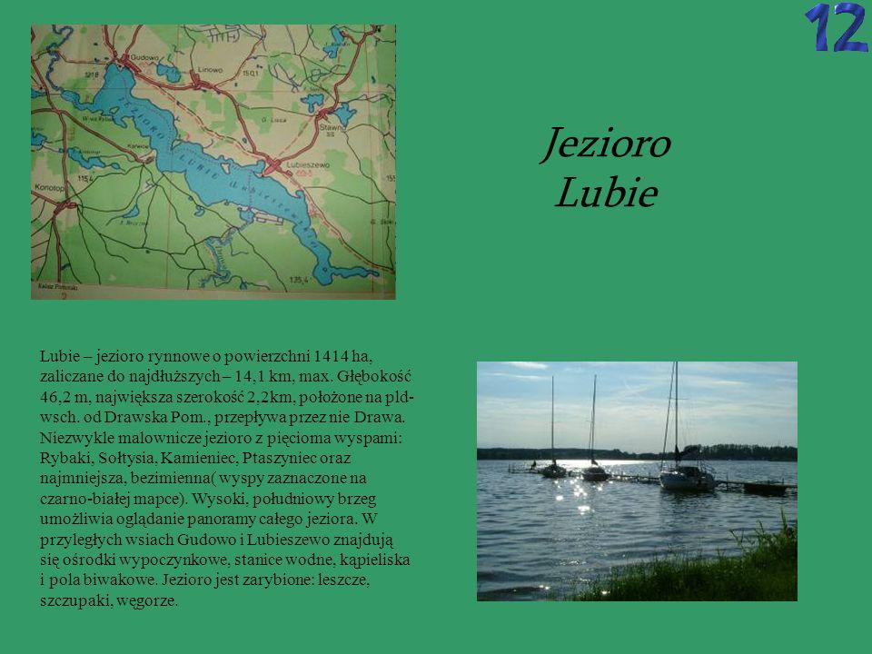 WOKÓŁ JEZIORA LUBIE: Czerwony, dł.50 km.