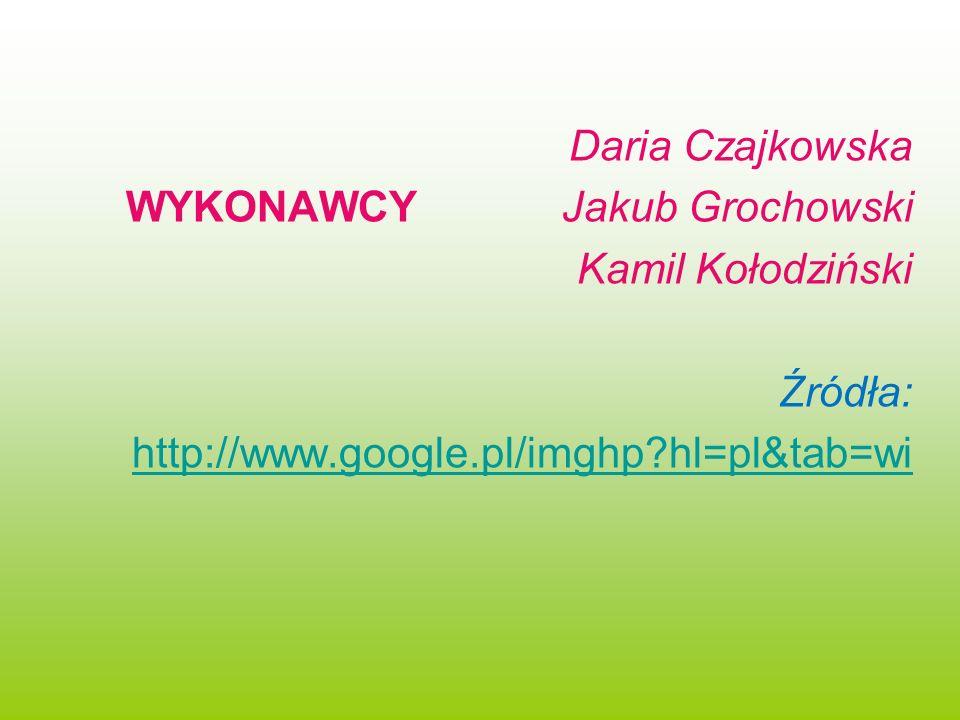 Daria Czajkowska WYKONAWCY Jakub Grochowski Kamil Kołodziński Źródła: http://www.google.pl/imghp?hl=pl&tab=wi
