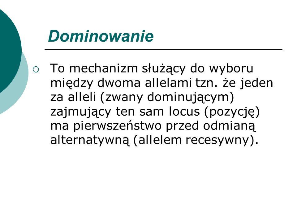 Dominowanie To mechanizm służący do wyboru między dwoma allelami tzn. że jeden za alleli (zwany dominującym) zajmujący ten sam locus (pozycję) ma pier