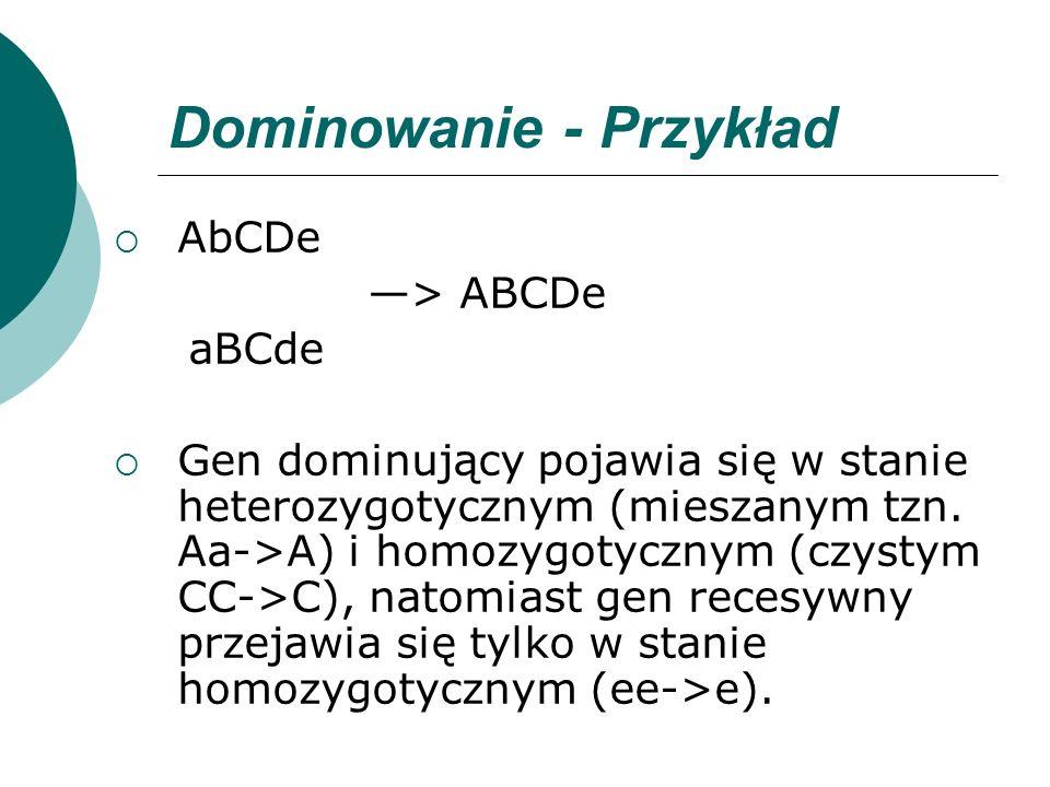 Dominowanie - Przykład AbCDe > ABCDe aBCde Gen dominujący pojawia się w stanie heterozygotycznym (mieszanym tzn. Aa->A) i homozygotycznym (czystym CC-